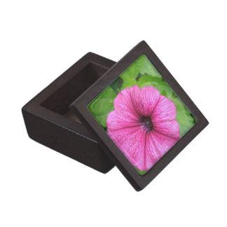Pink Petunia Flower Premium Gift Box