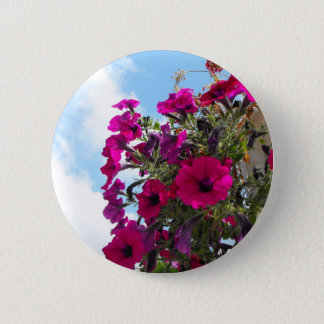 pink petunia flowers basket in blue sky button