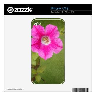 Pink Petunia iPhone 4 Decal