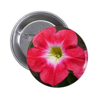 Pink Petunia Pinback Button