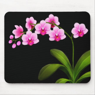 Pink Phalaenopsis Orchid Flowers Mousepad