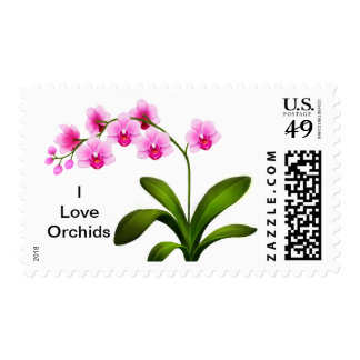 Pink Phalaenopsis Orchids Customizable Postage