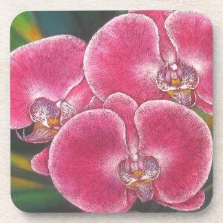 Pink Phalaenopsis Orchids Flowers Acrylic Painting Beverage Coaster