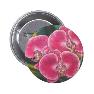 Pink Phalaenopsis Orchids Flowers Acrylic Painting Button