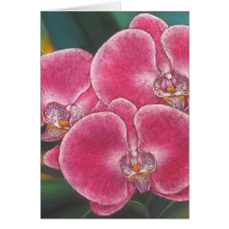 Pink Phalaenopsis Orchids Flowers Acrylic Painting Card