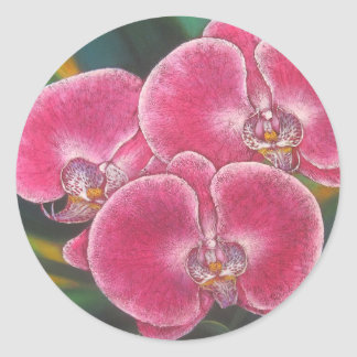 Pink Phalaenopsis Orchids Flowers Acrylic Painting Classic Round Sticker