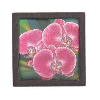Pink Phalaenopsis Orchids Flowers Acrylic Painting Keepsake Box