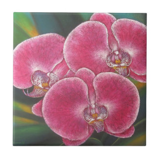 Pink Phalaenopsis Orchids Flowers Acrylic Painting Tile