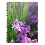 Pink Phlox and Grass Summer Flowers Notebook