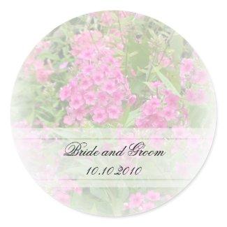 Pink Phlox Floral Sticker