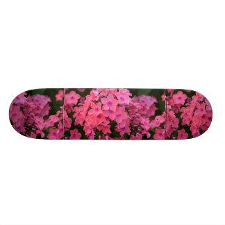 Pink Phlox Flowers Skateboard Decks
