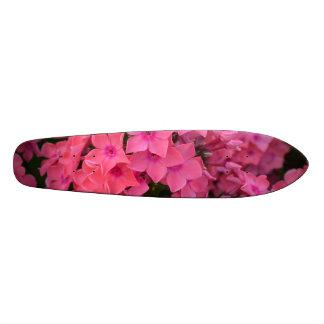 Pink Phlox Flowers Skate Board Decks