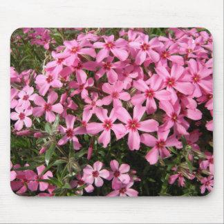Pink Phlox Mousepad