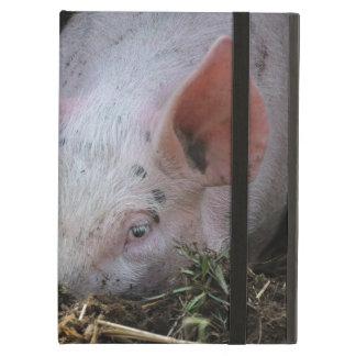 Pink pig photo iPad case