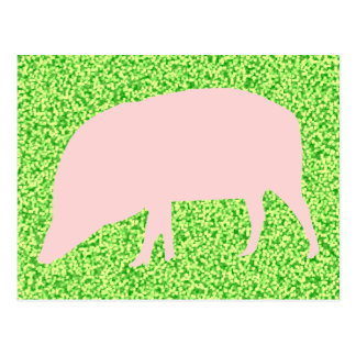 Pink Pig Postcard