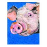 Pink Pig Postcards