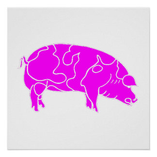 Pink Pig Poster