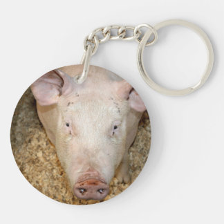 Pink pig with ear tag cute piggie picture acrylic key chain