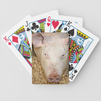 Pink pig with ear tag cute piggie picture bicycle card decks