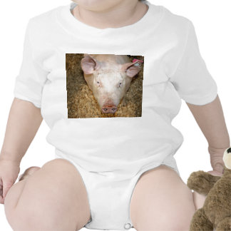 Pink pig with ear tag cute piggie picture romper