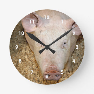 Pink pig with ear tag cute piggie picture round clock