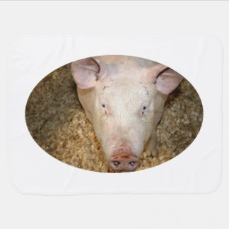 Pink pig with ear tag cute piggie picture receiving blanket