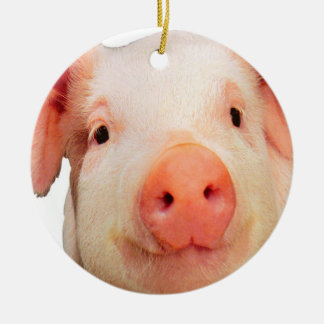 """Pink piglet design"" products Ceramic Ornament"
