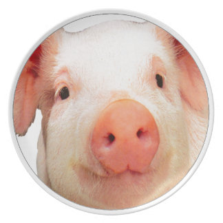 """Pink piglet"" Plate"