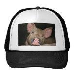 Pink Piglet Trucker Hat