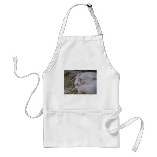 Pink piglets lying down on straw adult apron