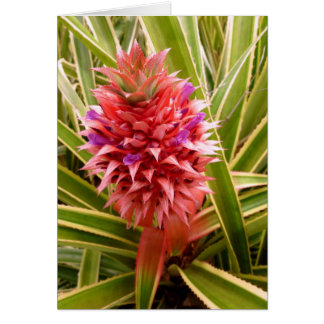 Pink Pineapple Greeting Cards