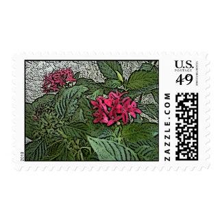Pink Pinta FLower Stamp