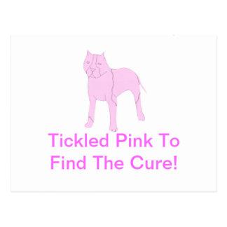 Pink Pit Bull Postcard
