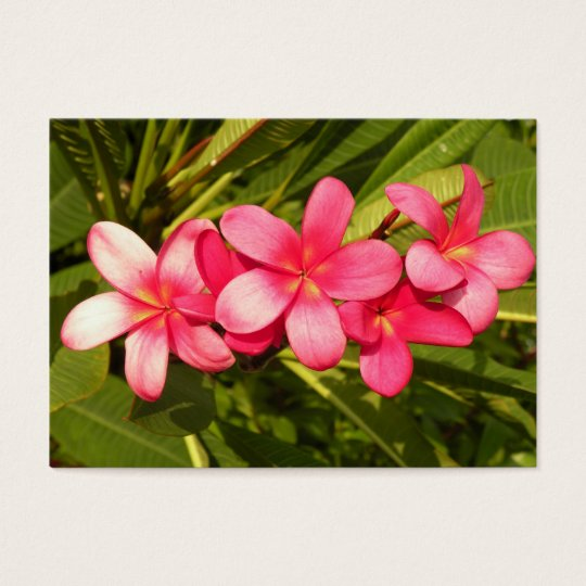 Pink plumeria business card