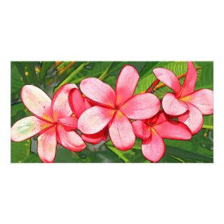 Pink plumeria card