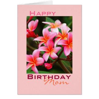 Pink Plumeria Flowers, Birthday Card