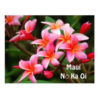 Pink Plumeria Flowers, Maui Nō Ka Oi Postcard
