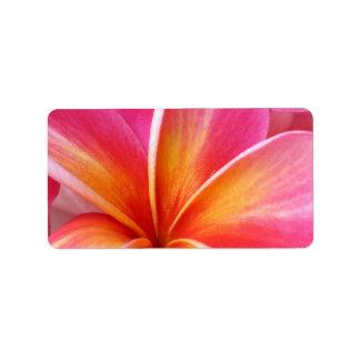 Pink Plumeria Frangipani Hawaii Flower Hawaiian Custom Address Labels