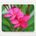 Pink Plumeria Frangipani Hawaiian Flower Mouse Pads