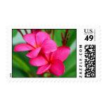 Pink Plumeria Frangipani Hawaiian Flower Stamp
