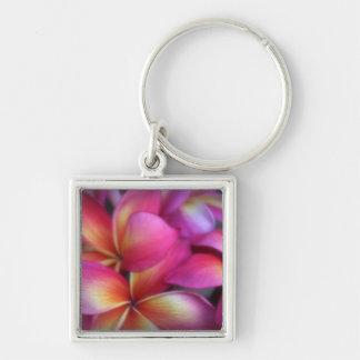 Pink Plumeria keychain