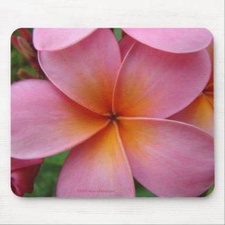 Pink Plumeria Mousepad mousepad