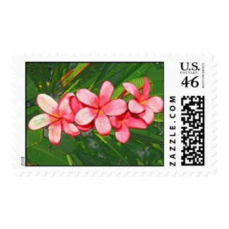 Pink plumeria postage stamps