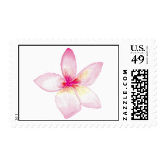 Pink Plumeria Postage Stamp
