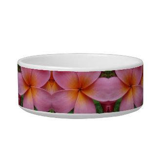 Pink Plumeria Tropical Flower Blossoms Pet Bowl Cat Bowls