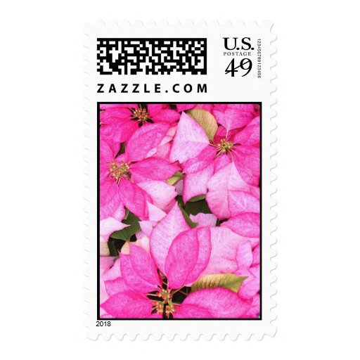Pink Poinsettia Stamp