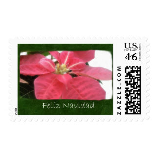 Pink Poinsettias 2 - Feliz Navidad Postage Stamps