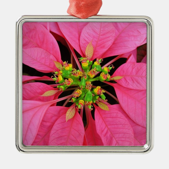 Pink Pointsettia Ornament