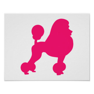Pink Poodle Poster