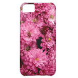 Pink Poofs iPhone 5C Covers